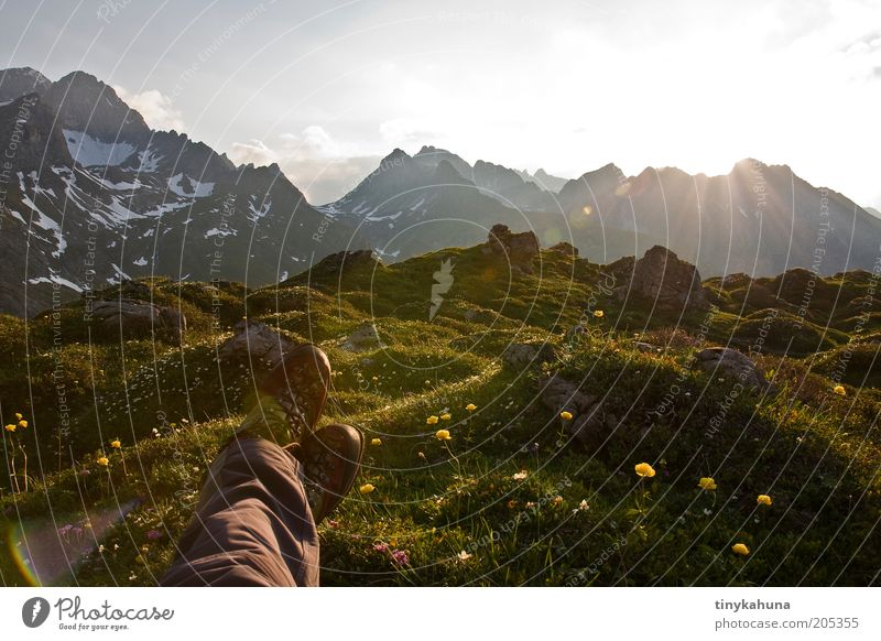 Human being Nature Flower Green Plant Summer Calm Far-off places Relaxation Meadow Grass Mountain Freedom Happy Dream Feet