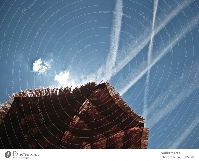 Sky Sun Blue Summer Warmth Climate Joie de vivre (Vitality) Sunshade Beautiful weather Summer vacation Vapor trail
