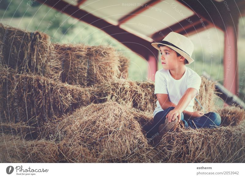 Pensive boy Vacation & Travel Freedom Human being Feminine Child Toddler Boy (child) Infancy 1 3 - 8 years Nature Spring Meadow Field Dream Sadness Emotions