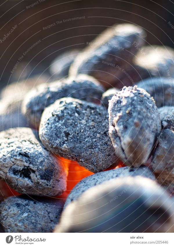 summer heat Embers Coal Charcoal (cooking) Hot Gray Orange Glow Fire Incandescent BBQ season Colour photo Exterior shot Close-up Deserted Day