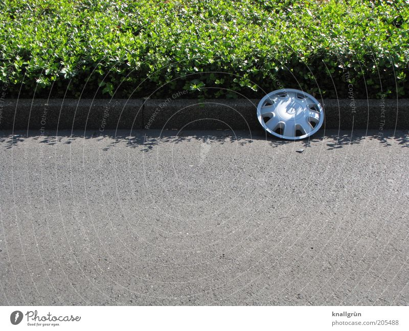 Pick me up! Plant Ground cover plant Traffic infrastructure Street Traffic lane Curbside Roadside Curbstone Wheel cover decorative panel Lie Round Under Gray