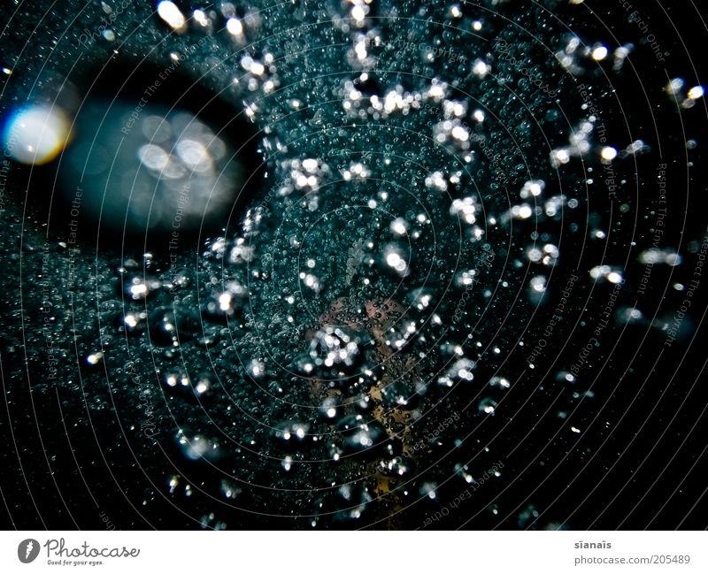 Water Blue Dark Cold Air Dive Mysterious Bubble Deep Elements Air bubble Go up Go under Unclear Ocean Oxygen