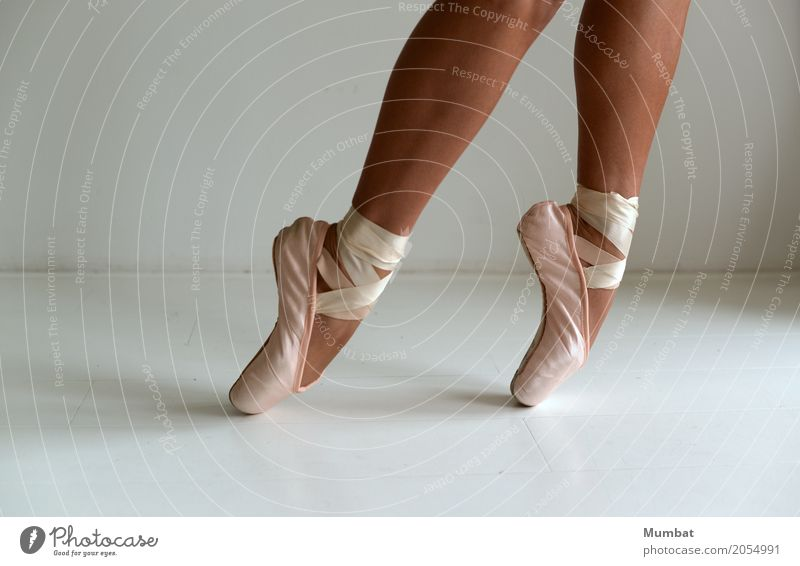 tip of the toe Athletic Ballet Dance Human being Feminine Young woman Youth (Young adults) Woman Adults Legs Feet 1 18 - 30 years Dancer Ballet shoe laced