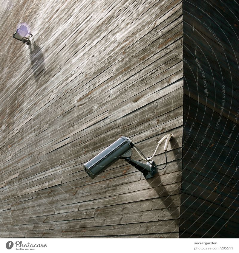 [H 10.1] the shadow side of life. Video camera Technology Surveillance camera Monitoring Manmade structures Building Architecture Facade Wood Observe Tall Above