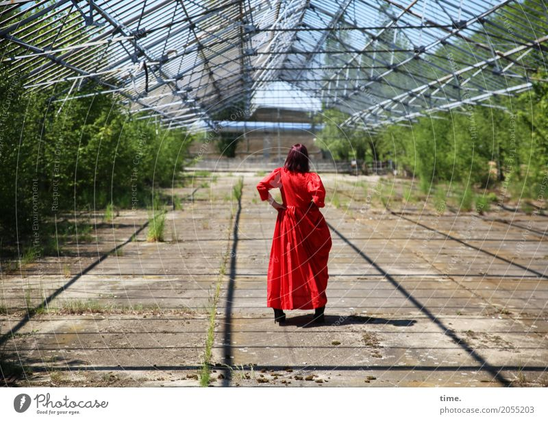 Human being Woman Adults Feminine Time Stand Perspective Observe To hold on Dress Inspiration Long-haired Brunette