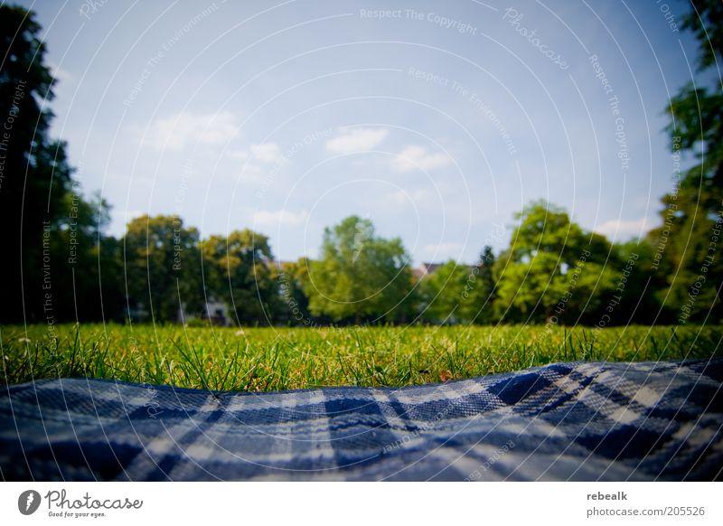 Nature Sky Green Summer Calm Relaxation Meadow Grass Garden Freedom Park Contentment Break Lie Leisure and hobbies