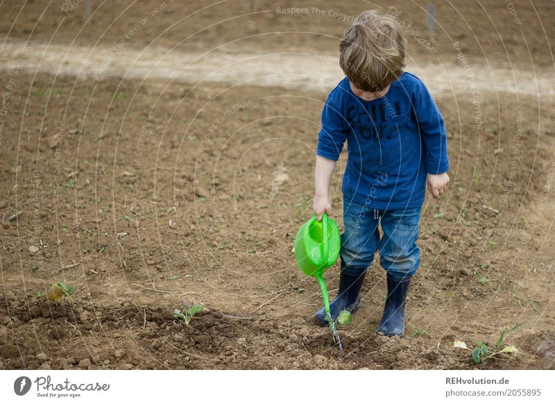 Child Human being Nature Plant Blue Green Environment Spring Natural Boy (child) Garden Work and employment Masculine Field Growth Infancy