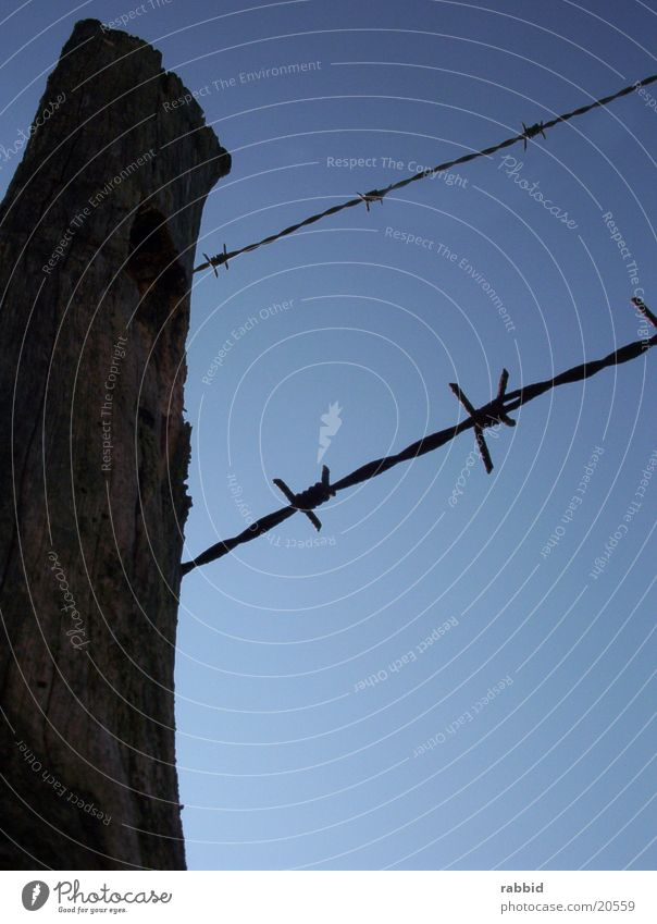 barbed wire fence Barbed wire Fence Barbed wire fence Blue sky Beautiful weather