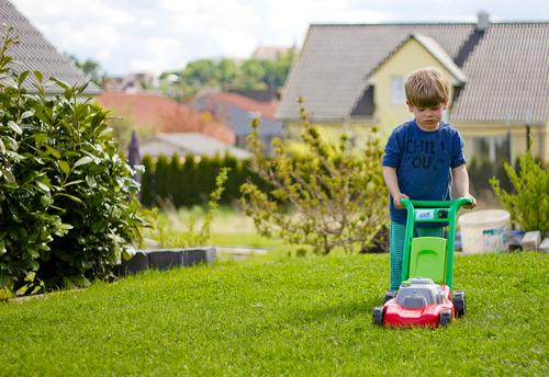 Human being Child Green House (Residential Structure) Meadow Natural Grass Boy (child) Playing Garden Work and employment Living or residing Leisure and hobbies