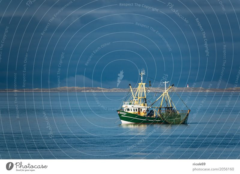 Crab cutter on the North Sea off the island of Föhr Vacation & Travel Tourism Island Water Clouds Coast Fishing boat Watercraft Net Nature Tradition Environment