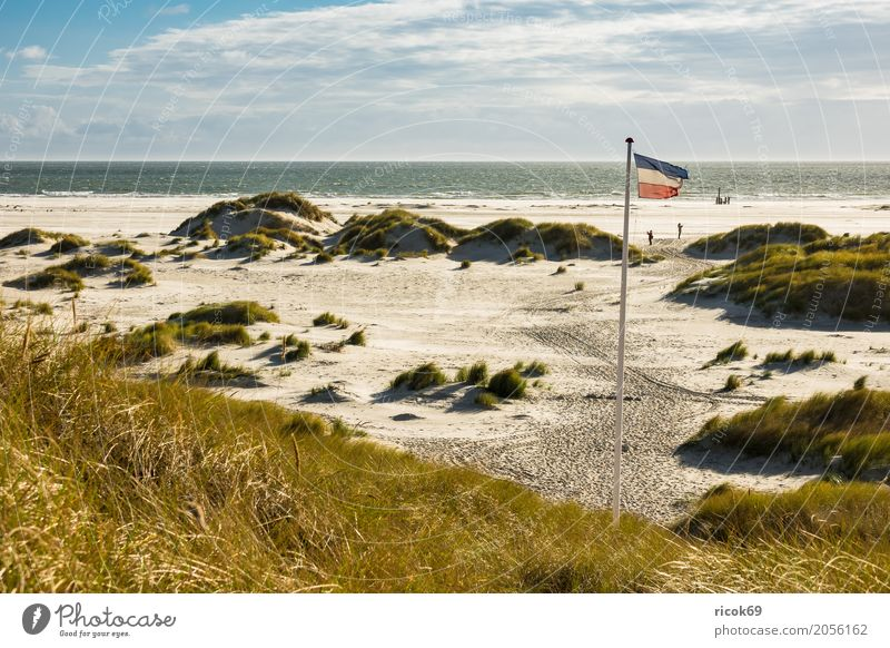 Landscape in the dunes on the island of Amrum Relaxation Vacation & Travel Tourism Beach Ocean Island Nature Sand Clouds Autumn Coast North Sea Flag Blue Yellow