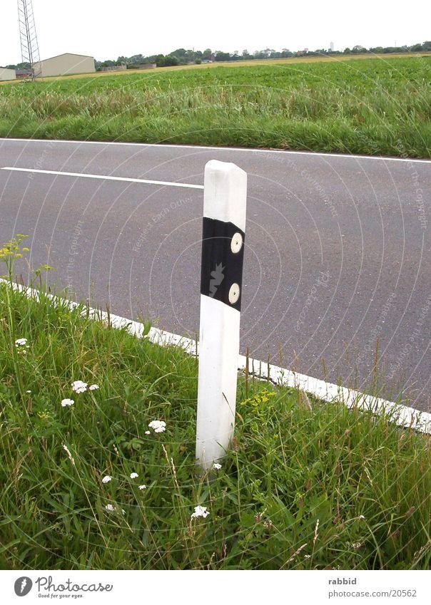 Grass Column Pole Plain Portrait format March