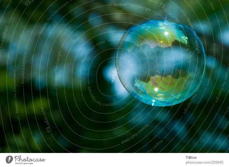 The world in a soap bubble Blue Green Dream Colour photo Exterior shot Experimental Deserted Copy Space left Reflection Shallow depth of field