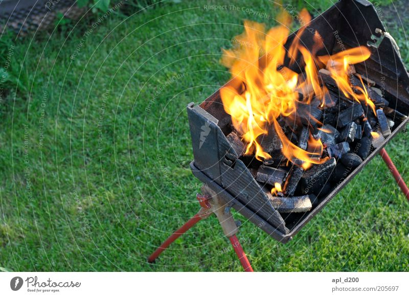 Green Red Summer Black Yellow Garden Fire Esthetic Lawn Authentic Threat Leisure and hobbies Hot Barbecue (event) Flame