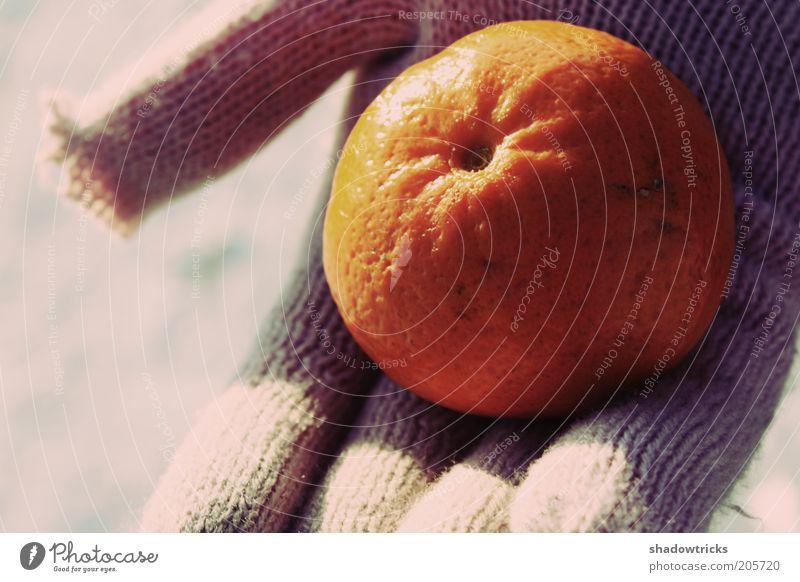 Orange Orange Healthy Food Fruit Stop To enjoy Beige Gloves Vegetarian diet Tangerine