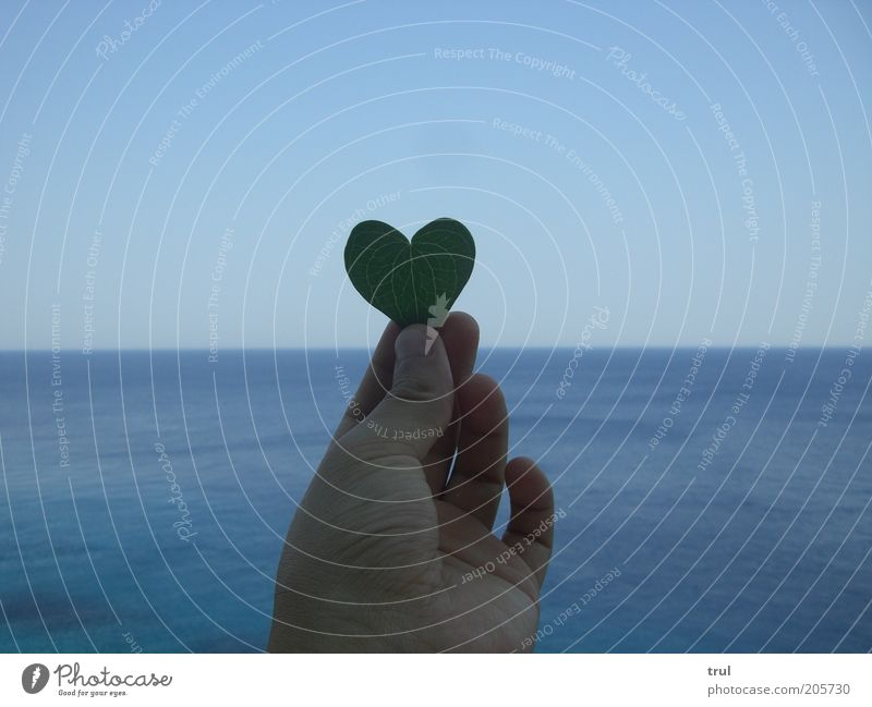 Hand Ocean Summer Leaf Love Far-off places Emotions Heart Free Horizon Fingers Longing Thumb Perspective Human being Heart-shaped