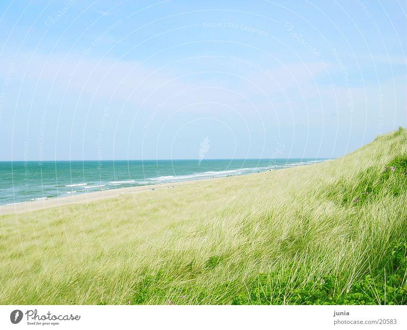 Ocean Beach Beach dune Sylt