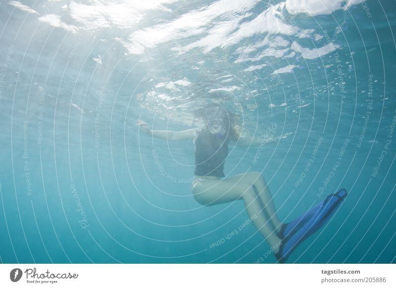 sunbathe Sunbathing Sunbeam Sunlight Woman Dive Vacation & Travel Snorkeling Swimming & Bathing Ocean Maldives Caribbean Sea Cuba Lesser Antilles Yucatan