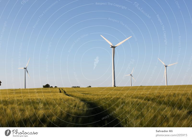 Blue Summer Germany Wind Environment Gold Europe Perspective Hope Energy industry Esthetic Future Change Climate Clean Wind energy plant
