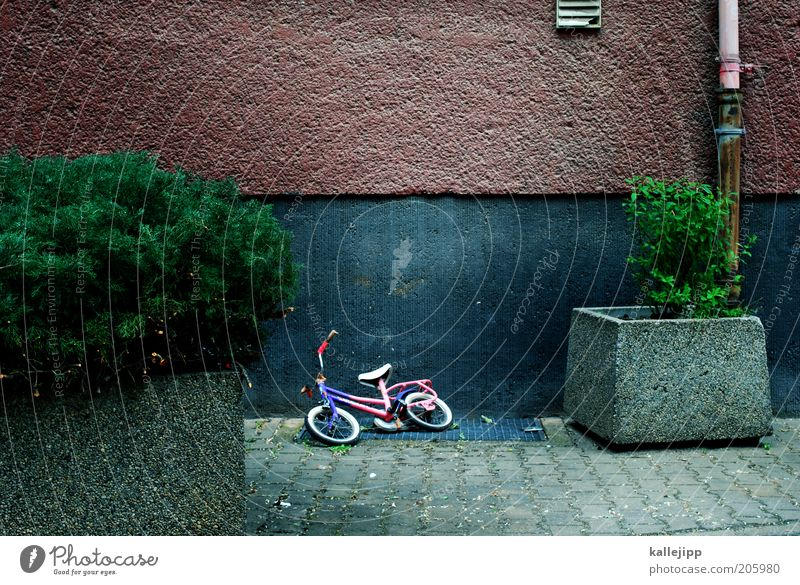 break Bicycle Plant Bushes Wall (barrier) Wall (building) Empty Time Colour photo Exterior shot Deserted Contrast Infancy Window box Kiddy bike Doomed Forget