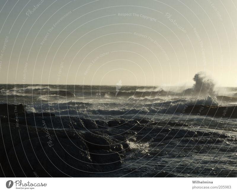 I Sea U Elements Water Sky Cloudless sky Horizon Storm Wind Gale Rock Waves Coast Bay Ocean Movement Colour photo Subdued colour Exterior shot Deserted
