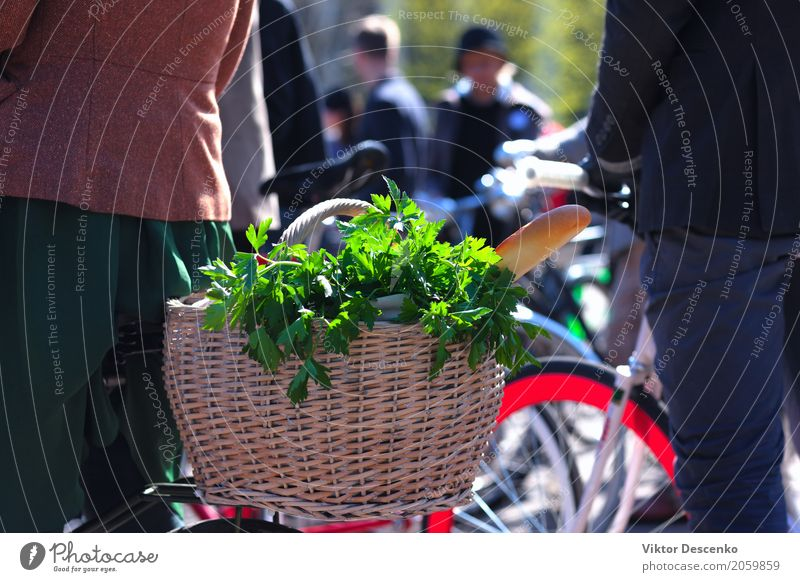 Basket of groceries on the bike Woman Vacation & Travel Old Summer Beautiful Green Flower Red Adults Street Natural Sports Food Transport Decoration Fresh