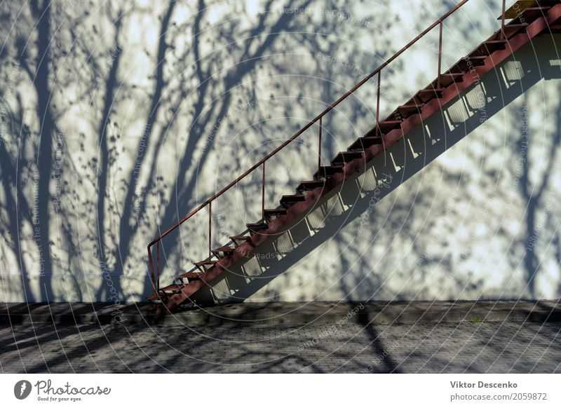 Stairs up the wall with shadow Nature Old White Tree Leaf House (Residential Structure) Architecture Street Building Art Stone Facade Design Metal