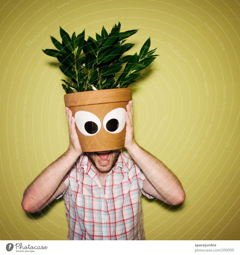 Hand Plant Flower Leaf Adults Eyes Head Funny Exceptional Arm Mouth Masculine To hold on Shirt Hide Narrow