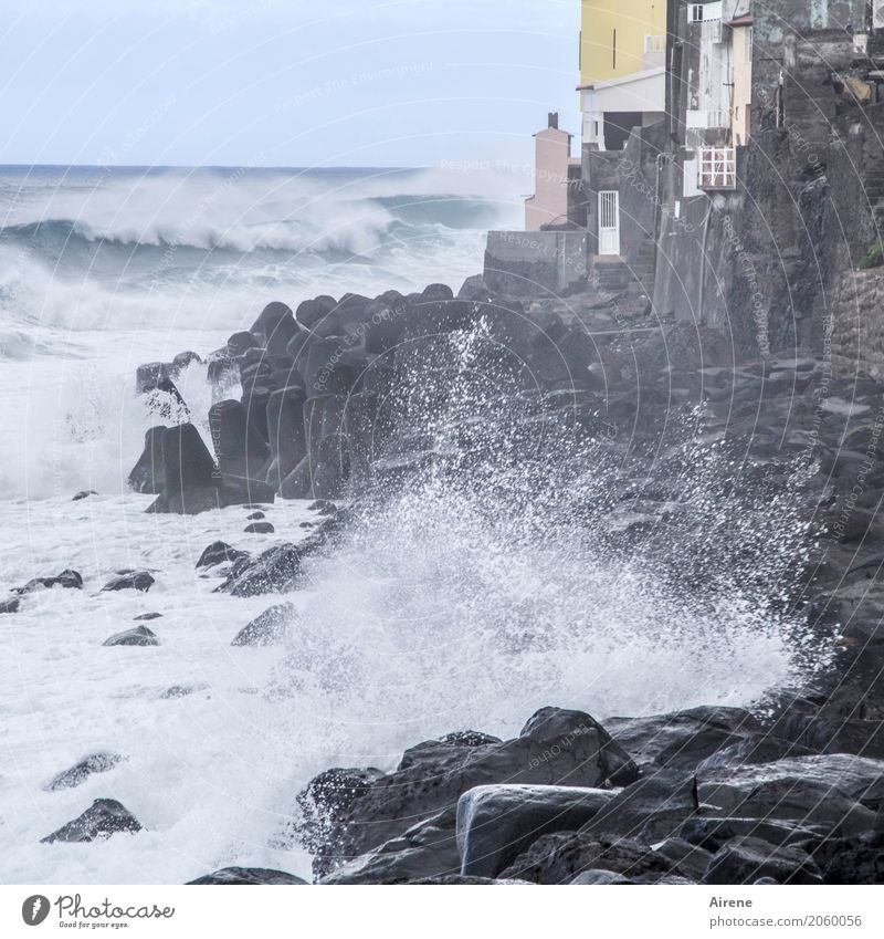 rough sea crashes on rocky coastline with fishing village Vacation & Travel Far-off places Ocean Waves Elements Water Gale Coast Madeira Village Fishing village