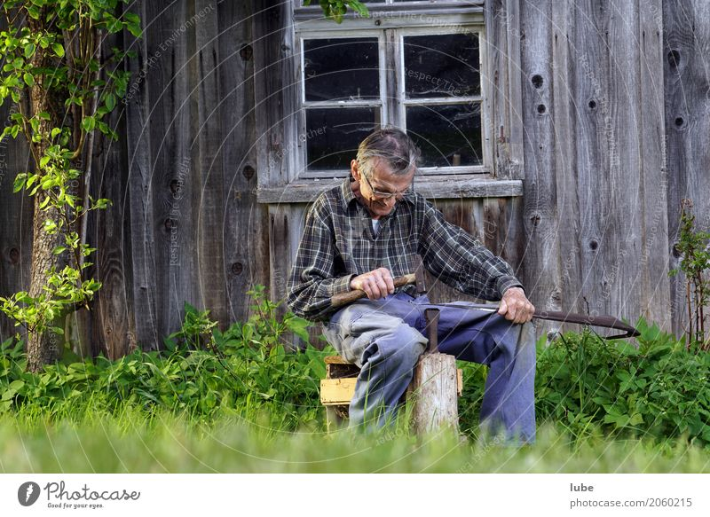 Human being Man Old Adults Senior citizen Work and employment 60 years and older Joie de vivre (Vitality) Fitness Tangy Male senior Agriculture Profession