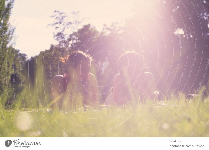 Human being Woman Sky Nature Youth (Young adults) Beautiful Tree Sun Adults Relaxation Environment Landscape Meadow Feminine To talk Warmth