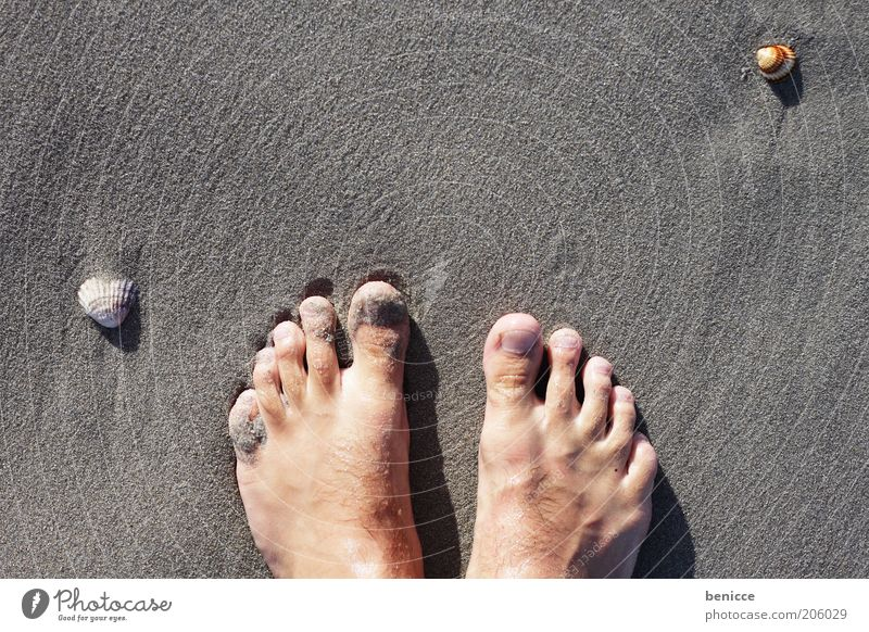 Feet in the sand Toes Beach Ocean Vacation & Travel Emotions Sand Bird's-eye view Sandy beach Mussel Search Man Self portrait Vacation photo Travel photography