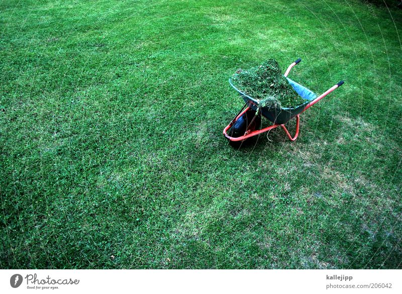 harvest 23 Work and employment Gardening Environment Nature Plant Summer Climate Grass Wheelbarrow Hay Full Harvest Mow the lawn Heap Colour photo Multicoloured