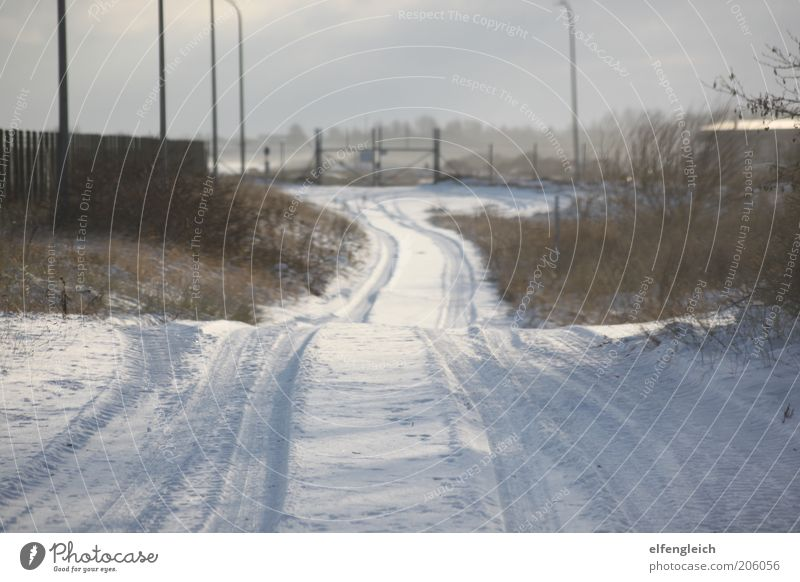 snow road Nature Landscape Winter Snow Traffic infrastructure Street Calm No through road Gate Fence Colour photo Exterior shot Deserted Day Light Shadow