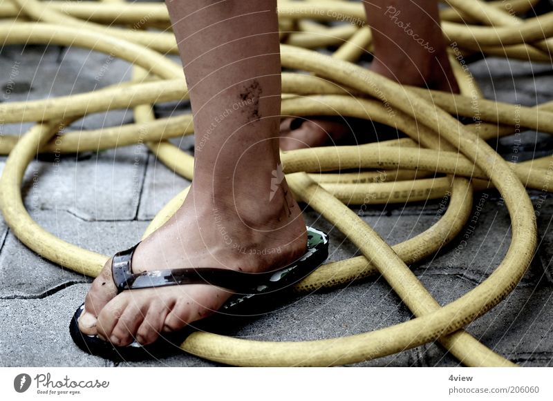 Human being Summer Yellow Stone Feet Legs Contentment Dirty Wet Hot Infancy Muddled Hose Tread Flip-flops Garden hose