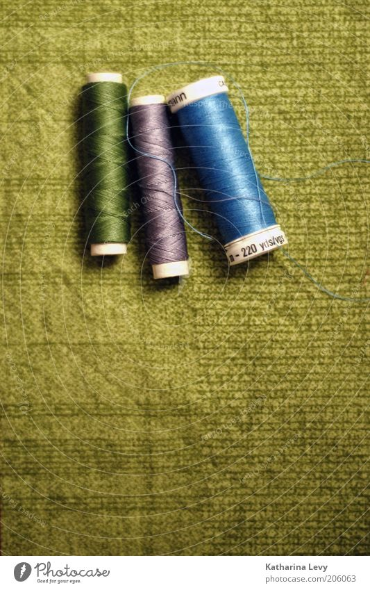 crafted Cloth Sewing thread Blue Green Violet Authentic Handcrafts Colour photo Interior shot Deserted Copy Space bottom Artificial light Coil Wound up