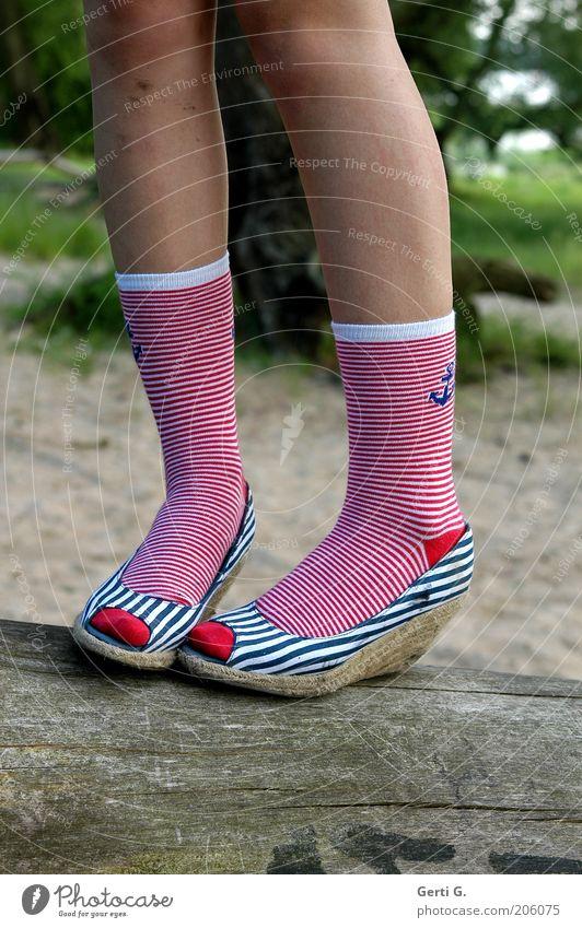 KneeStockingPose Legs In pairs 2 Stockings Striped socks Balance Stand Striped pantyhose Footwear wedge heel Posture Anchor navy look Girl`s leg Tree Tree trunk