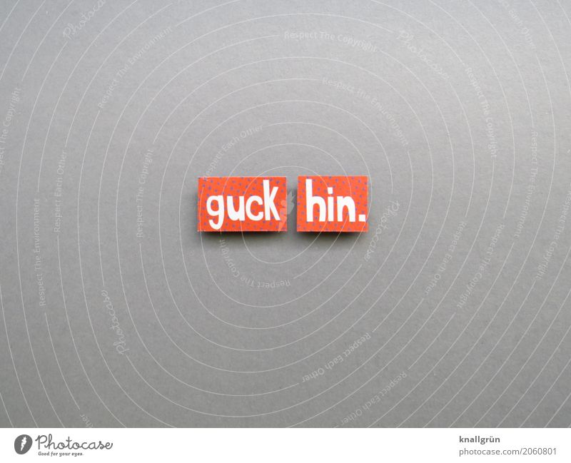 Look. Characters Signs and labeling Communicate Looking Sharp-edged Gray Orange White Emotions Brave Curiosity Interest Resolve Experience Expectation