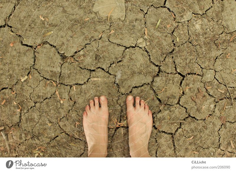 Human being Nature Summer Environment Warmth Feet Going Earth Climate Skin Stand Elements Symbols and metaphors Touch Dry Discover