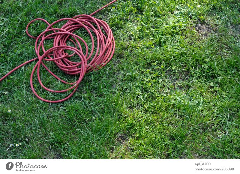 common thread Cable Technology Environment Garden Lie Green Red Terminal connector Handbook Electricity Colour photo Multicoloured Exterior shot Day Light