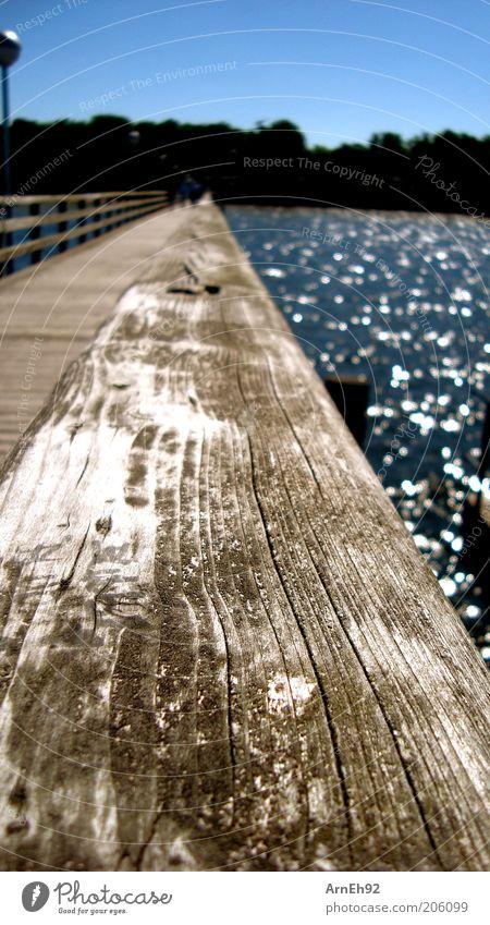 Water Sun Ocean Summer Freedom Warmth Brown Coast Glittering Bridge Observe Macro (Extreme close-up) Footbridge Wooden board Baltic Sea