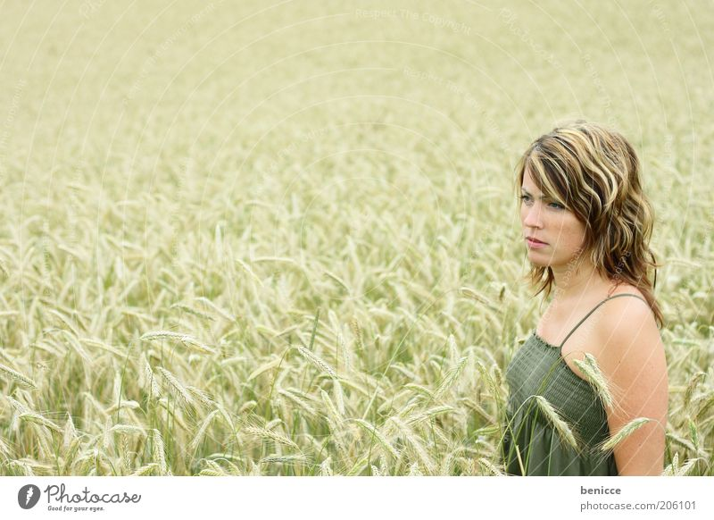 Human being Nature Youth (Young adults) Beautiful Summer Loneliness Life Field Stand Young woman Dress Touch Thin Grain Grain Cornfield