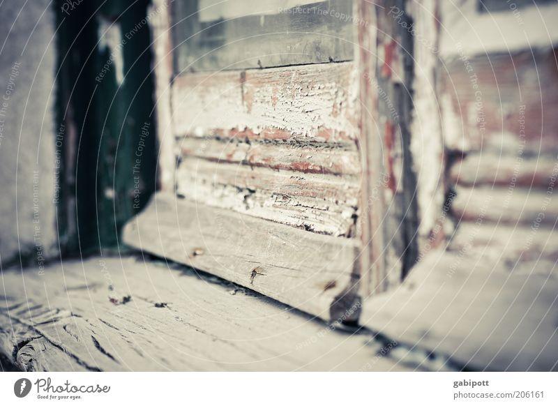 Old Window Wood Building Brown Dirty Door Gloomy Broken Authentic Change Transience Derelict Decline Trashy Past