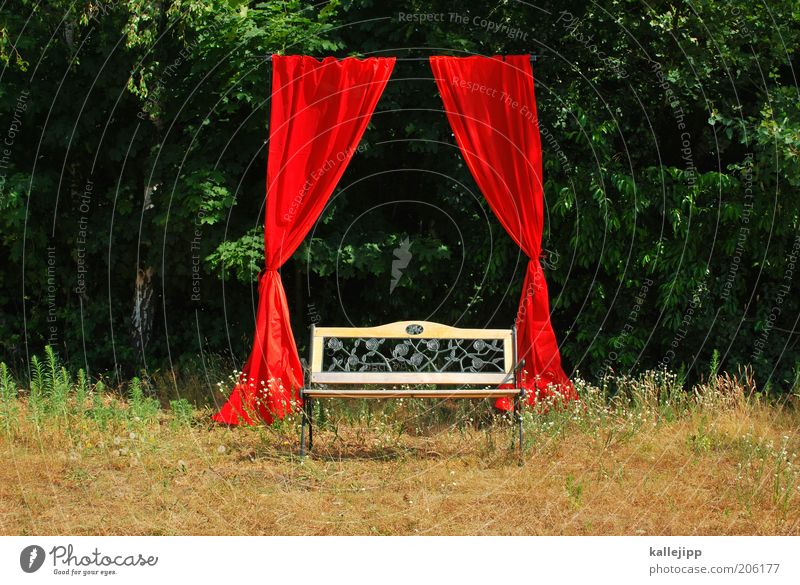 Place in the sun Elegant Style Art Stage play Theatre Culture Event Shows Outdoor festival Environment Nature Tree Esthetic Sustainability Drape Success Honor