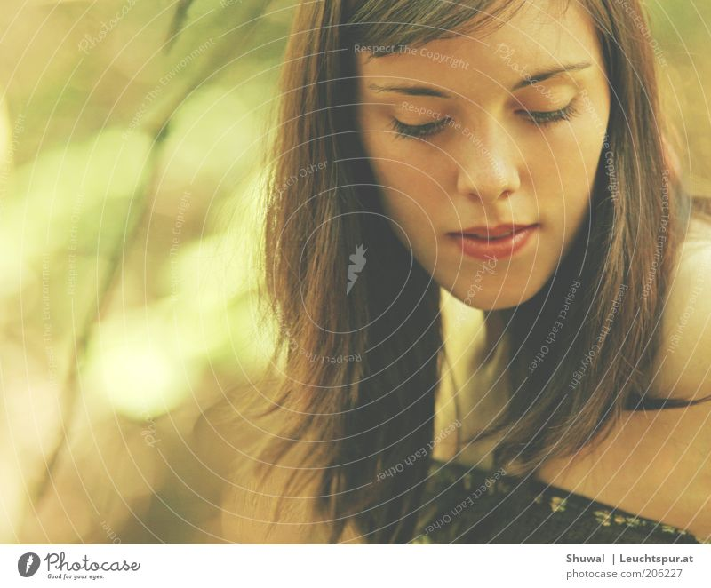 still wind Elegant Senses Relaxation Calm Young woman Youth (Young adults) Face Brunette Think To enjoy Dream Sadness Esthetic Beautiful Feminine Meditative