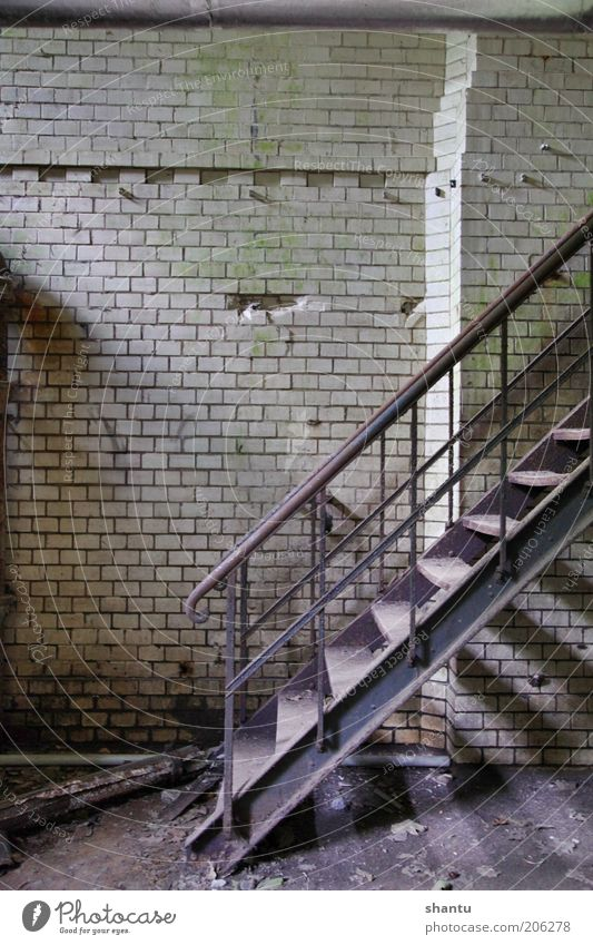 Stairs in an old basement Old Wall (building) Wall (barrier) Industry Stairs Factory Build
