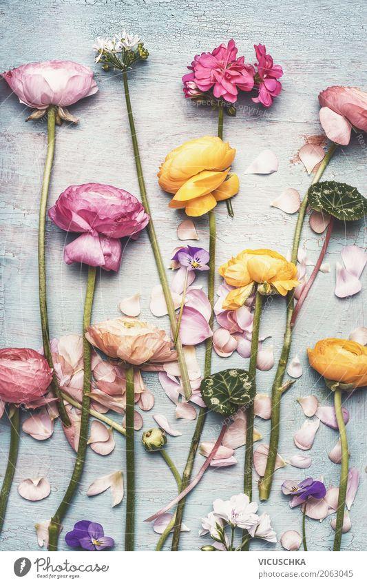 Nature Plant Summer Flower Leaf Blossom Love Style Garden Feasts & Celebrations Design Pink Lie Decoration Table Rose