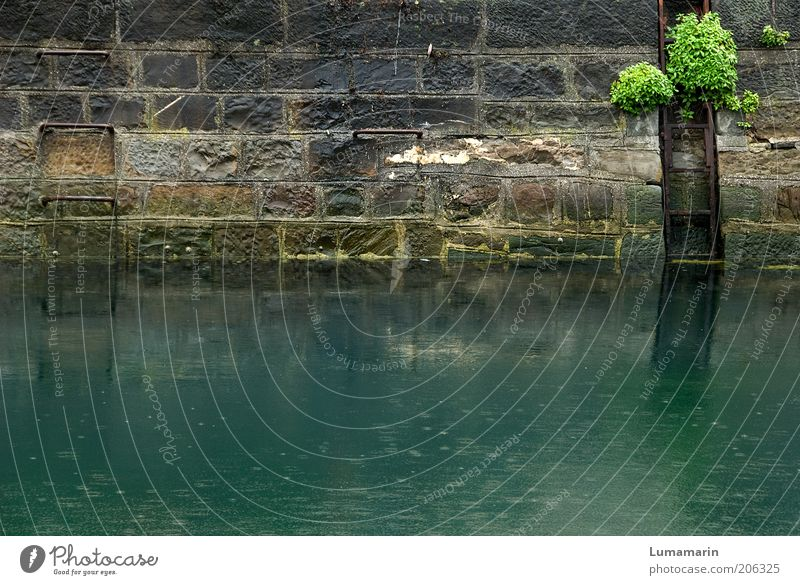 Water Ocean Green Plant Wall (building) Stone Wall (barrier) Rain Environment Wet Gloomy River Natural Station Historic Damp