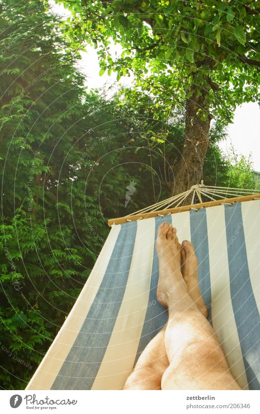 Tree Vacation & Travel Calm Relaxation Garden Feet Legs Break Lie Stripe Tree trunk Hedge Barefoot To swing Apple tree