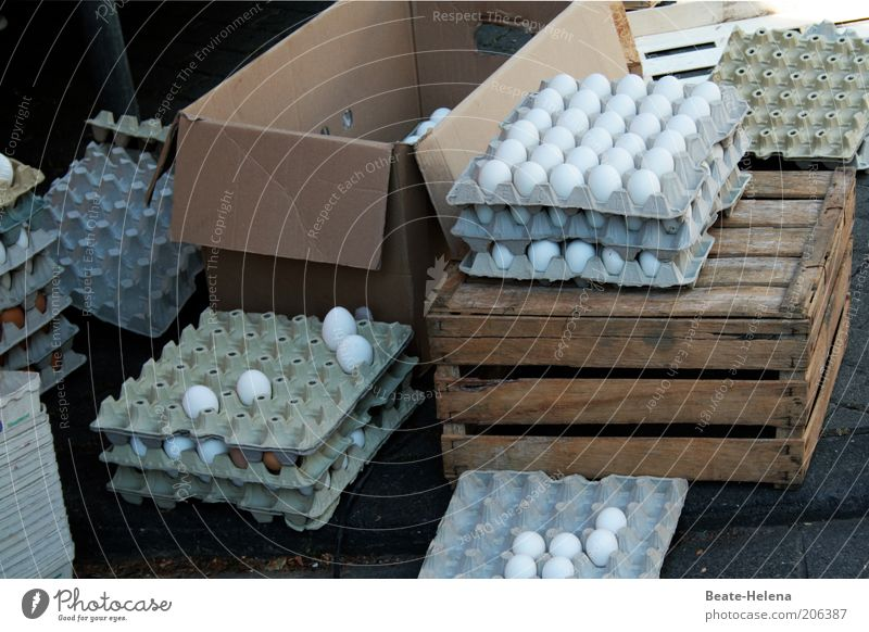 Mr. Meier, how much are the eggs? Food Nutrition Organic produce Packaging Fresh Natural White Nature Quality Eggshell Eggs cardboard Market day Market stall